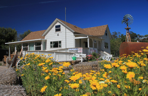 teten house